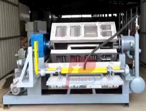 Egg Box Tray Moulding Machine